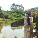 12-06-19- Nova adesão Produtor de Água - Arlindo Fronza (5)