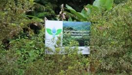 Evento de 10 anos do Produtor de Água do Rio Camboriú tem dois dias de programação